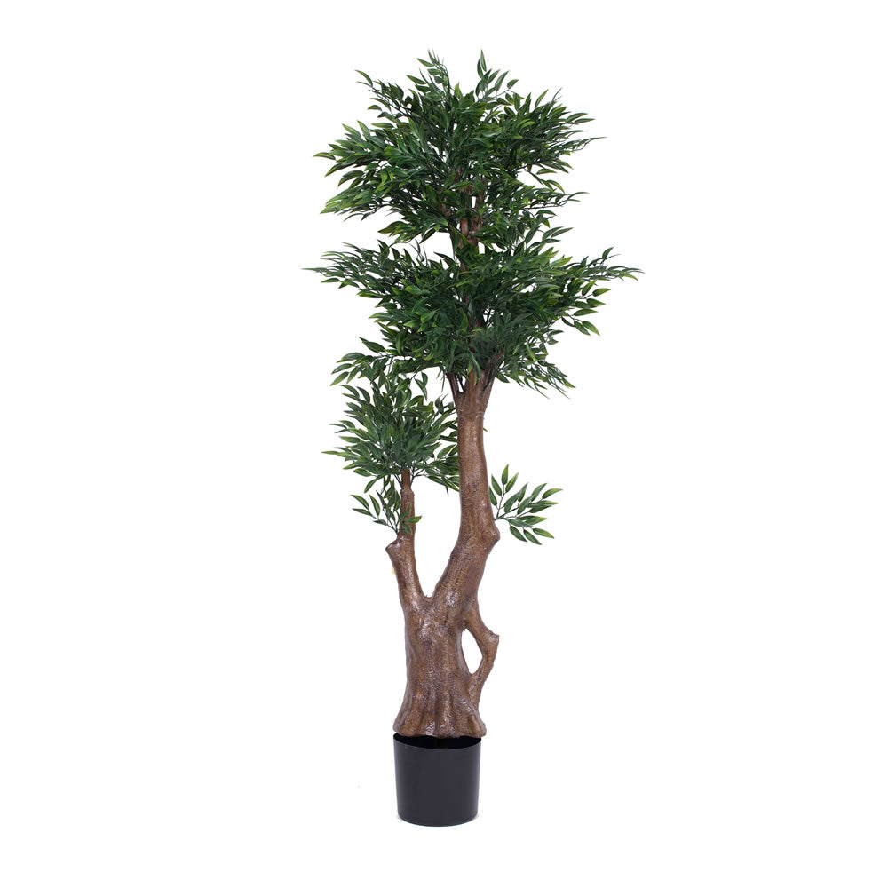 "Vickerman 60"" UV Resistant Artificial Ruscus Tree 5 Branch Pots w/ 2520 Leaves"