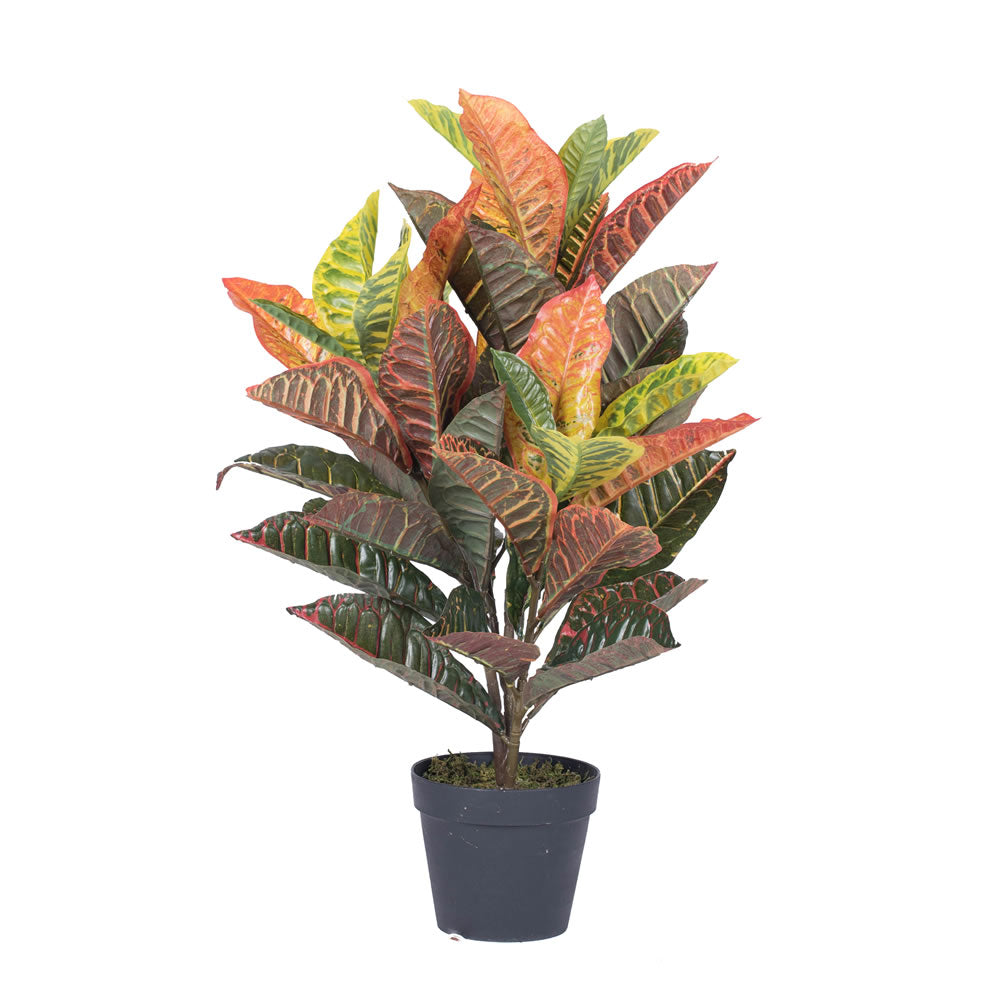 "Vickerman 30"" Artificial Real touch croton in pot - Silk Poly"