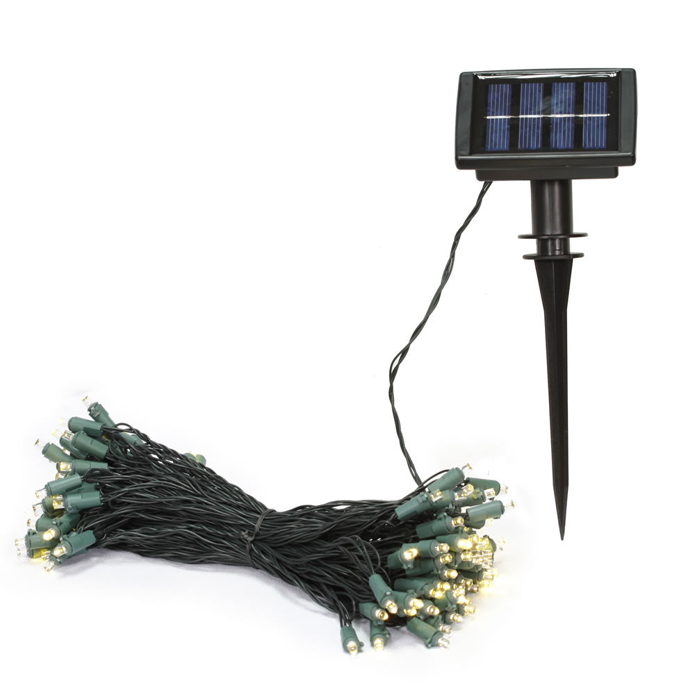"50Lt Warm White LED Solar Set 6Hr Timer 3""Sp"