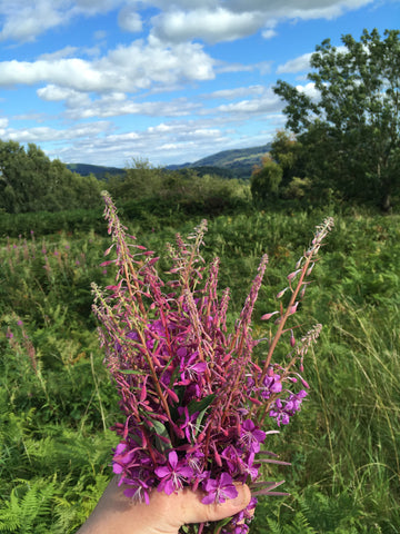 Rosebay Willowherb Jelly