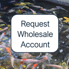 Request Wholesale Account