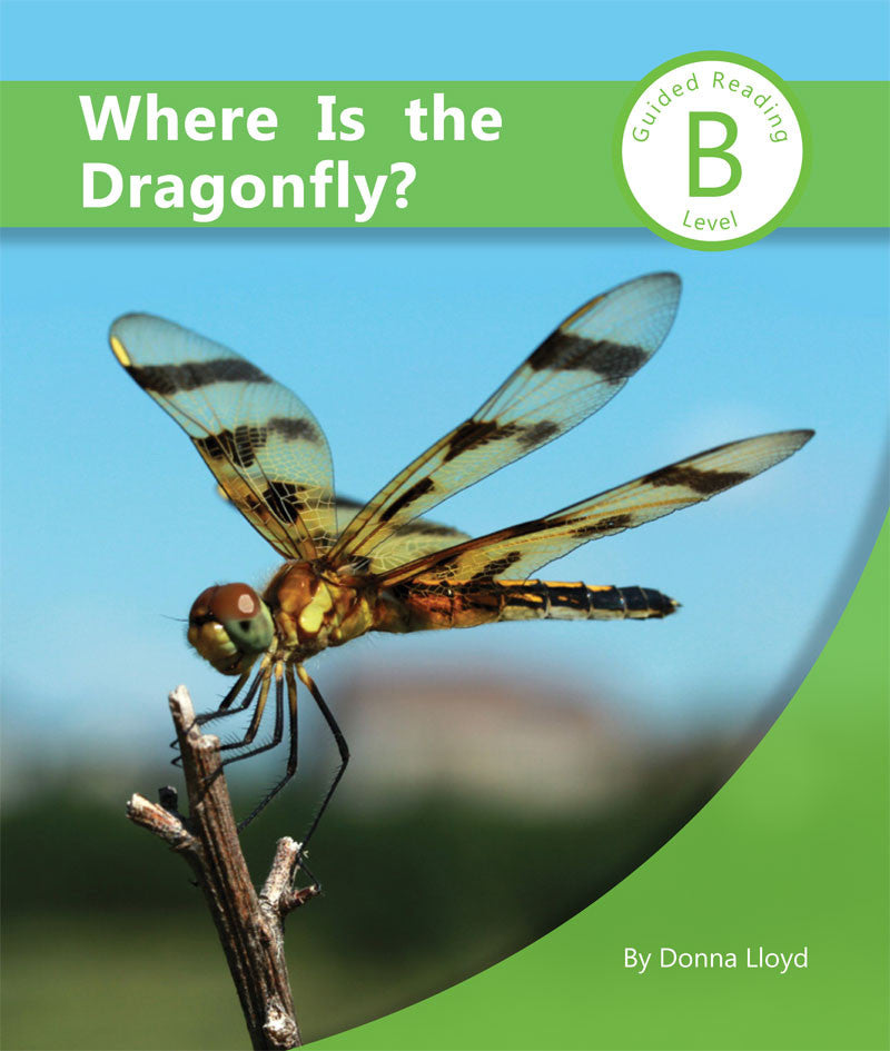Where Is The Dragonfly (SC204016)