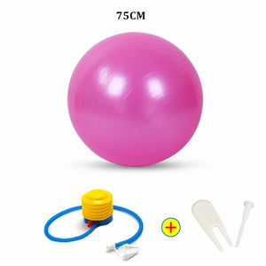 Sports Yoga Balls Bola Pilates Fitness Ball Gym Balance Fitball Exercise Pilates Workout Massage Ball with Pump 55cm 65cm 75cm