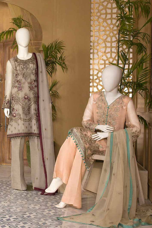 Nafeesa by Flossie Chiffon Embroidered Unstitched 3 Piece Suit collection NCC21-05-NIRVSH