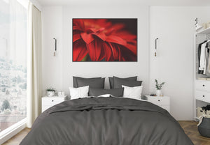 Red Color Art Prints Meanings