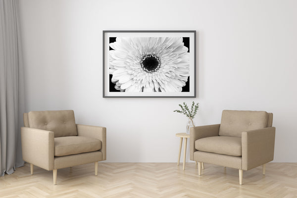 White Flower Print For Living Room