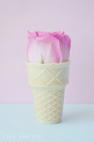 A Pink Flower In Ice Cream Cone For New Girl's Room