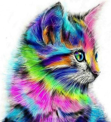 paint by numbers | Colorful Kitten | advanced animals cats Pop Art | FiguredArt