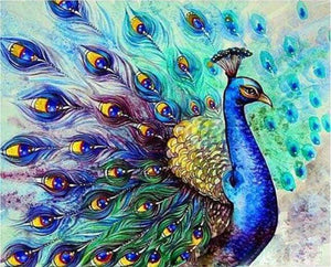 paint by numbers | Colorful Peacock | animals intermediate peacocks | FiguredArt