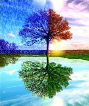 Diamond Painting | Diamond Painting - 4 Seasons Tree | Diamond Painting Landscapes landscapes trees | FiguredArt