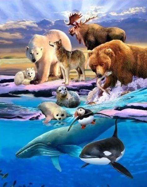 Diamond Painting | Diamond Painting - Arctic Animals | animals Diamond Painting Animals | FiguredArt