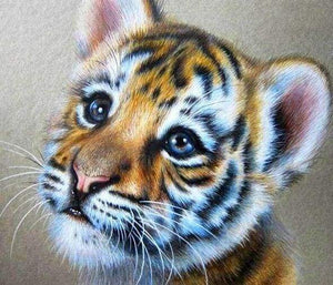 Diamond Painting | Diamond Painting - Baby Tiger | animals Diamond Painting Animals tigers | FiguredArt