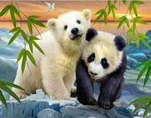Load image into Gallery viewer, Diamond Painting | Diamond Painting - Bear and Panda | animals bear Diamond Painting Animals pandas | FiguredArt