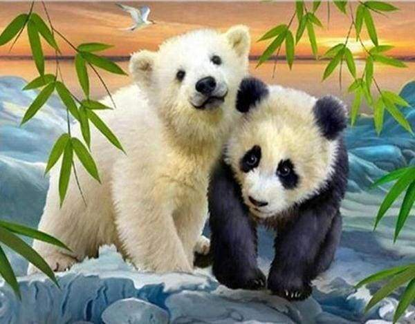 Diamond Painting | Diamond Painting - Bear and Panda | animals bear Diamond Painting Animals pandas | FiguredArt