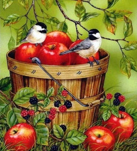 Diamond Painting | Diamond Painting - Birds and Apples | animals birds Diamond Painting Animals | FiguredArt
