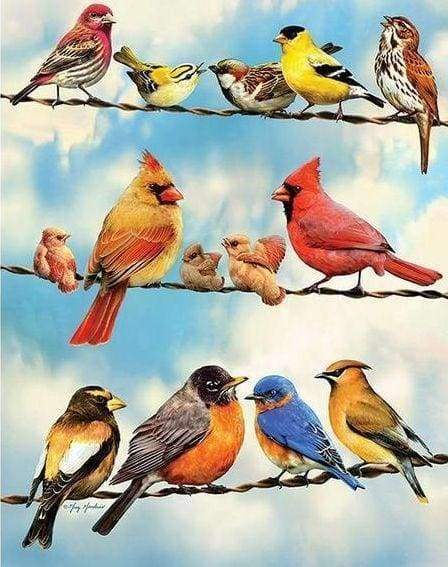Diamond Painting | Diamond Painting - Birds Lines | animals birds Diamond Painting Animals | FiguredArt