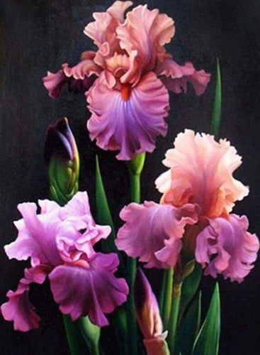 Diamond Painting | Diamond Painting - Blooming Iris | Diamond Painting Flowers flowers | FiguredArt