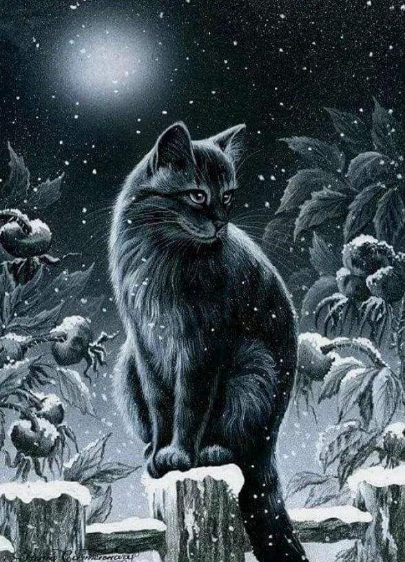 Diamond Painting | Diamond Painting - Cat in the Snow | animals cats Diamond Painting Animals winter | FiguredArt