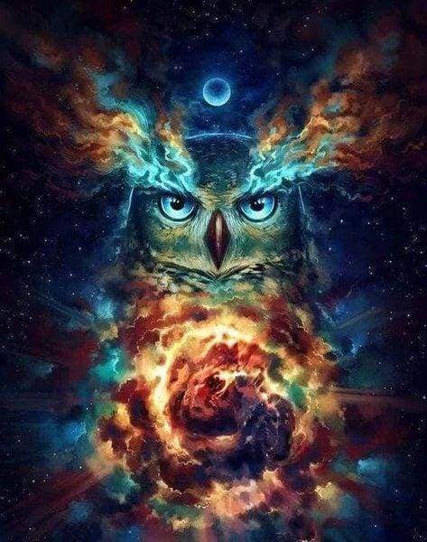 Diamond Painting | Diamond Painting - Celestial Owl | animals Diamond Painting Animals owls | FiguredArt