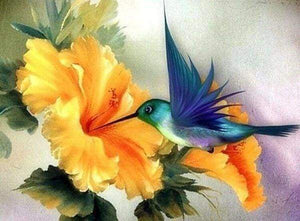 Diamond Painting | Diamond Painting - Colibri | animals Diamond Painting Animals | FiguredArt
