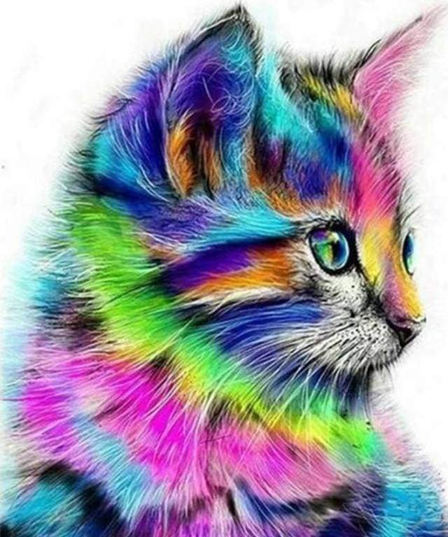 Diamond Painting | Diamond Painting - Colorful Kitten | animals cats Diamond Painting Animals | FiguredArt