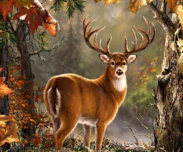 Diamond Painting | Diamond Painting - Deer on the lookout | animals Diamond Painting Animals | FiguredArt