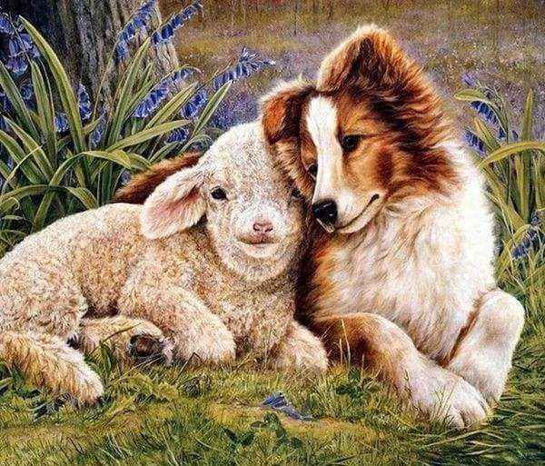 Diamond Painting | Diamond Painting - Dog and Sheep | animals Diamond Painting Animals dogs | FiguredArt