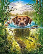 Load image into Gallery viewer, Diamond Painting | Diamond Painting - Dog in the stream | animals Diamond Painting Animals dogs | FiguredArt