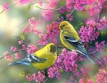 Load image into Gallery viewer, Diamond Painting | Diamond Painting - Flowering branch on Birds | animals birds Diamond Painting Animals | FiguredArt