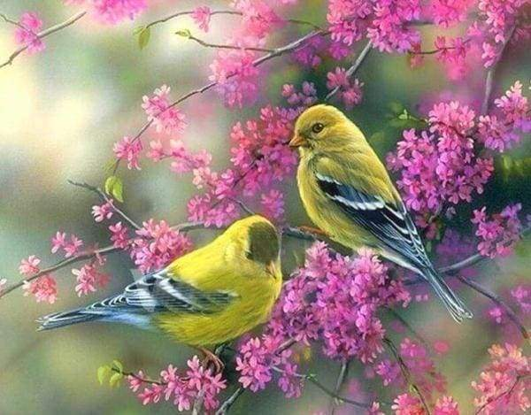 Diamond Painting | Diamond Painting - Flowering branch on Birds | animals birds Diamond Painting Animals | FiguredArt