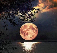 Load image into Gallery viewer, Diamond Painting | Diamond Painting - Full Moon | Diamond Painting Landscapes landscapes | FiguredArt