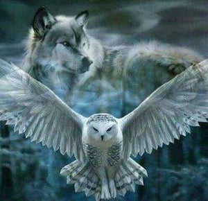 Diamond Painting | Diamond Painting - Gray Wolf and Owl | animals Diamond Painting Animals owls | FiguredArt