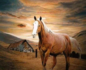 Diamond Painting | Diamond Painting - Horse at Dusk | animals Diamond Painting Animals horses | FiguredArt