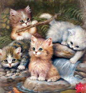 Diamond Painting | Diamond Painting - Kitten Players | animals cats Diamond Painting Animals | FiguredArt