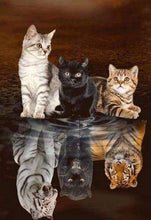 Load image into Gallery viewer, Diamond Painting | Diamond Painting - Kitten Reflection | animals cats Diamond Painting Animals | FiguredArt