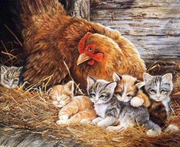 Diamond Painting | Diamond Painting - Kittens and Hen | animals cats Diamond Painting Animals | FiguredArt