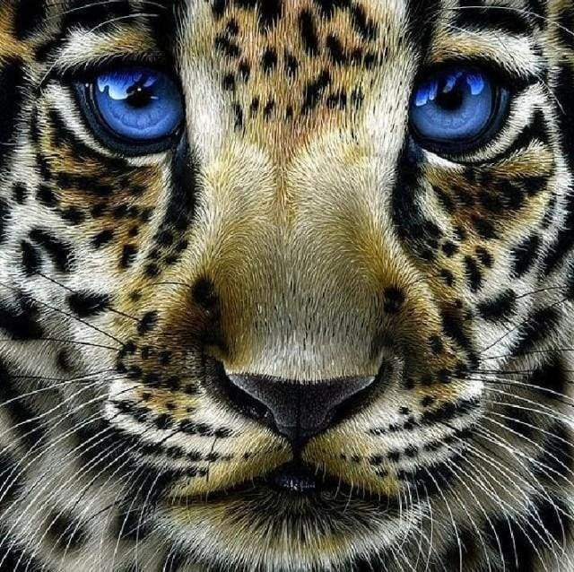 Diamond Painting | Diamond Painting - Leopard with Blue Eyes | animals Diamond Painting Animals leopards | FiguredArt