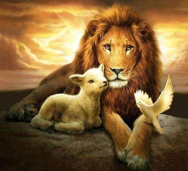 Diamond Painting | Diamond Painting - Lion sheep and Bird | animals birds Diamond Painting Animals lions | FiguredArt