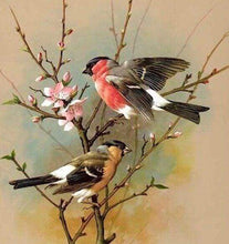 Load image into Gallery viewer, Diamond Painting | Diamond Painting - Little Bird on Branch | animals birds Diamond Painting Animals | FiguredArt