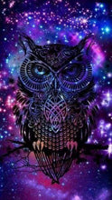 Load image into Gallery viewer, Diamond Painting | Diamond Painting - Owl in the Night | animals Diamond Painting Animals owls | FiguredArt