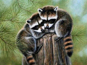 Diamond Painting | Diamond Painting - Perched Raccoon | animals Diamond Painting Animals raccoons | FiguredArt