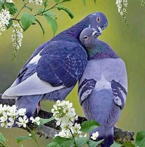 Diamond Painting | Diamond Painting - Pigeons in love | animals Diamond Painting Animals | FiguredArt