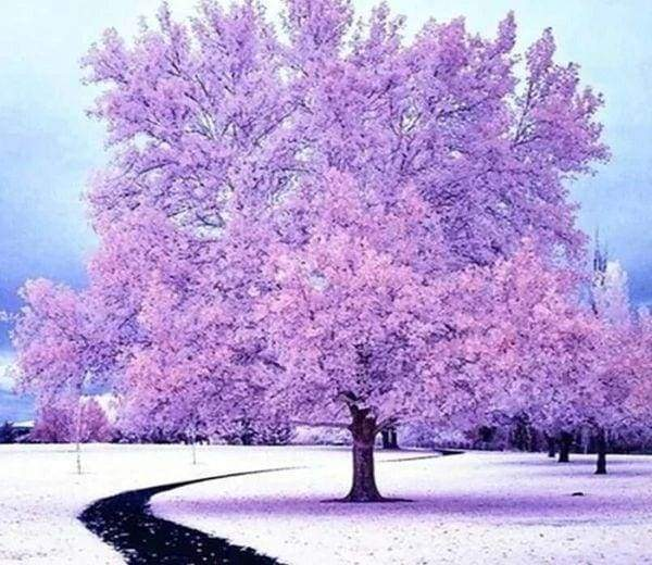 Diamond Painting | Diamond Painting - Pink Tree in the Snow | Diamond Painting Landscapes landscapes trees winter | FiguredArt