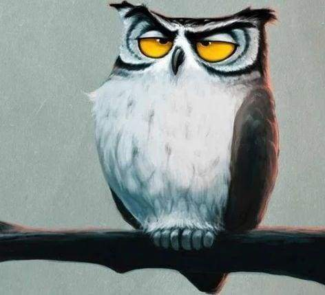 Diamond Painting | Diamond Painting - Sleepy Owl | animals Diamond Painting Animals owls | FiguredArt