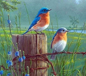 Diamond Painting | Diamond Painting - Small Birds | animals birds Diamond Painting Animals | FiguredArt
