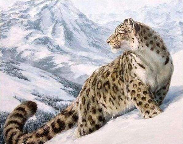 Diamond Painting | Diamond Painting - Snow Leopard | animals Diamond Painting Animals winter | FiguredArt