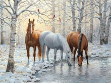 Load image into Gallery viewer, Diamond Painting | Diamond Painting - Three Horses in the Snowy Forest | animals Diamond Painting Animals horses | FiguredArt
