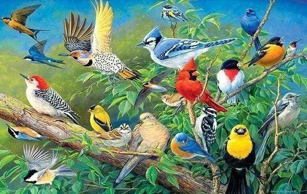 Diamond Painting | Diamond Painting - Tropical Birds | animals birds Diamond Painting Animals | FiguredArt