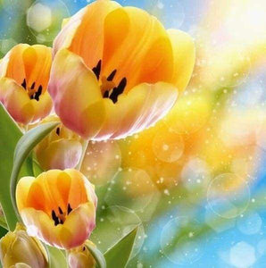 Diamond Painting | Diamond Painting - Yellow tulips | Diamond Painting Flowers flowers | FiguredArt