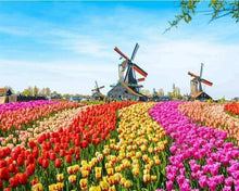 Load image into Gallery viewer, paint by numbers | Dutch Windmill Flowers | advanced flowers landscapes | FiguredArt